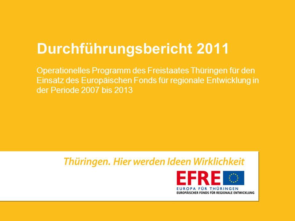 Durchführungsbericht 2011