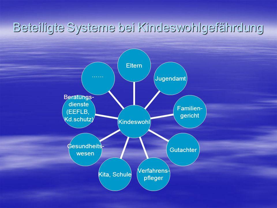Beteiligte Systeme bei Kindeswohlgefährdung