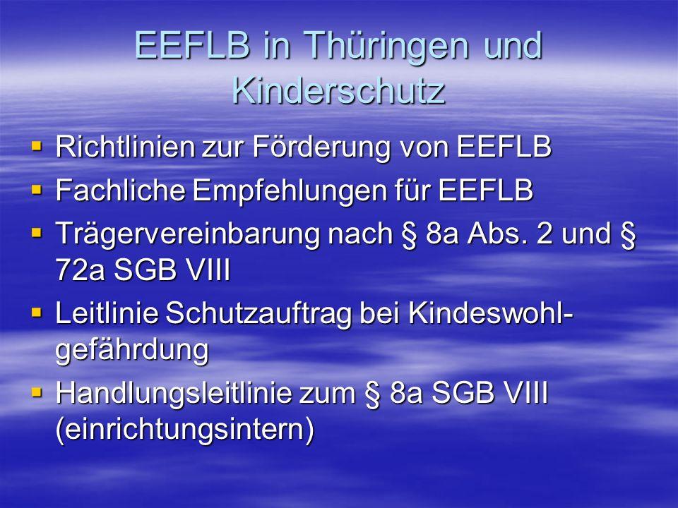 EEFLB in Thüringen und Kinderschutz