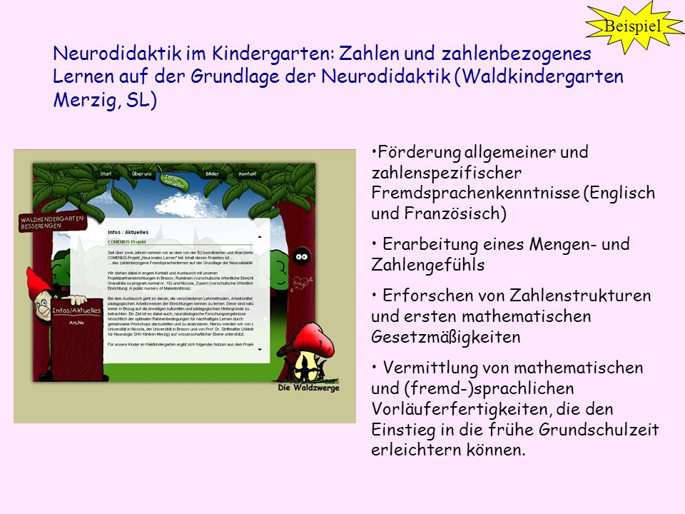Beispiel Neurodidaktik im Kindergarten: Zahlen und zahlenbezogenes Lernen auf der Grundlage der Neurodidaktik (Waldkindergarten Merzig, SL)