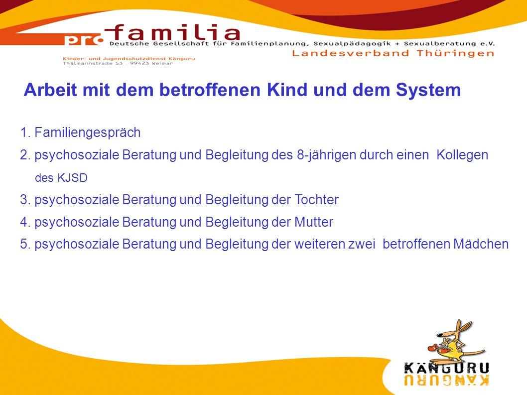 Arbeit mit dem betroffenen Kind und dem System