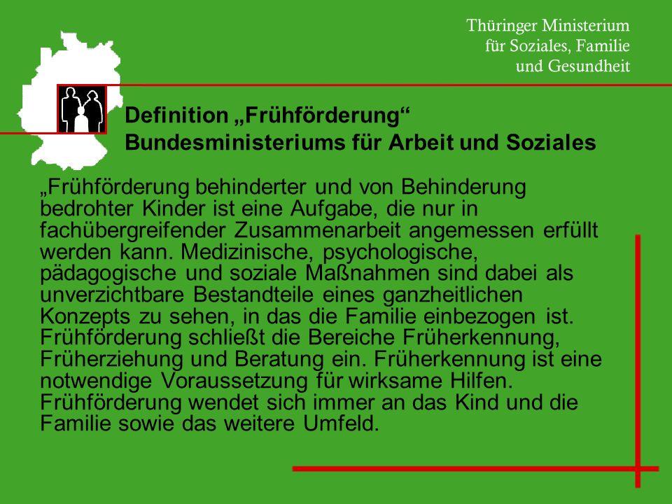 """Definition """"Frühförderung Bundesministeriums für Arbeit und Soziales"""