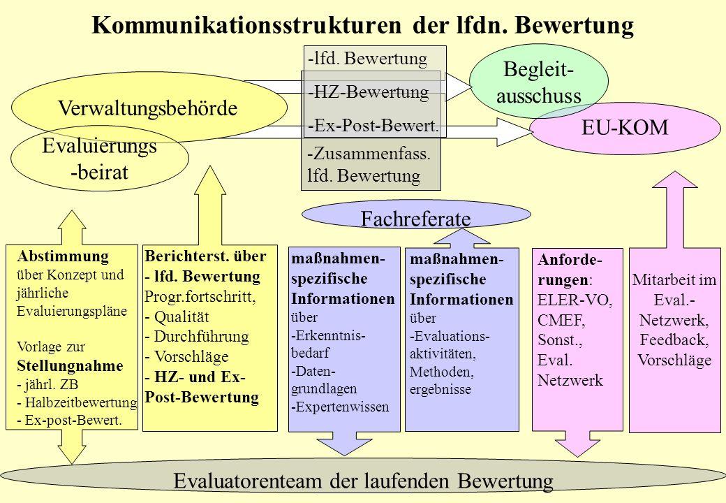 Kommunikationsstrukturen der lfdn. Bewertung