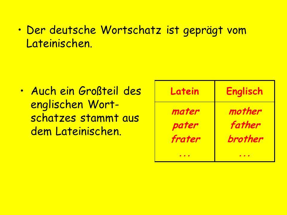 Der deutsche Wortschatz ist geprägt vom Lateinischen.