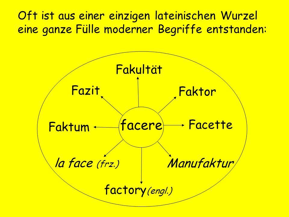 facere Fakultät Fazit Faktor Facette Faktum la face (frz.) Manufaktur