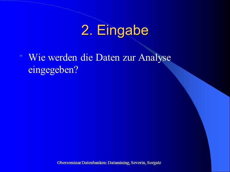 2. Eingabe Wie werden die Daten zur Analyse eingegeben