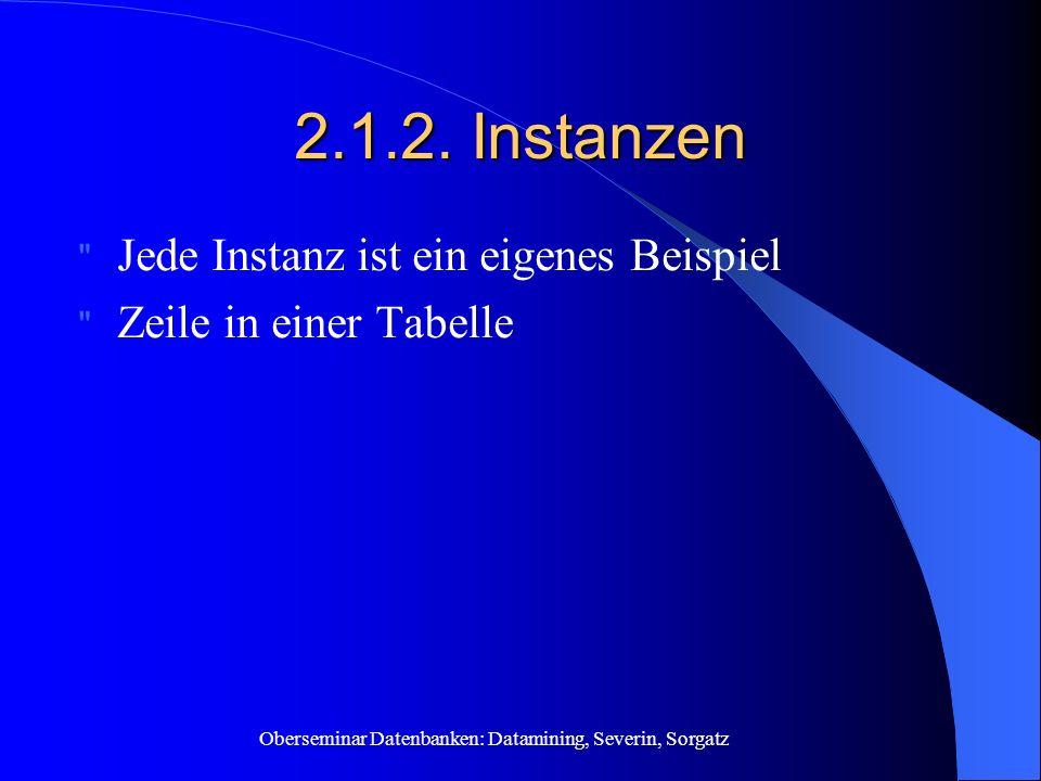 2.1.2. Instanzen Jede Instanz ist ein eigenes Beispiel