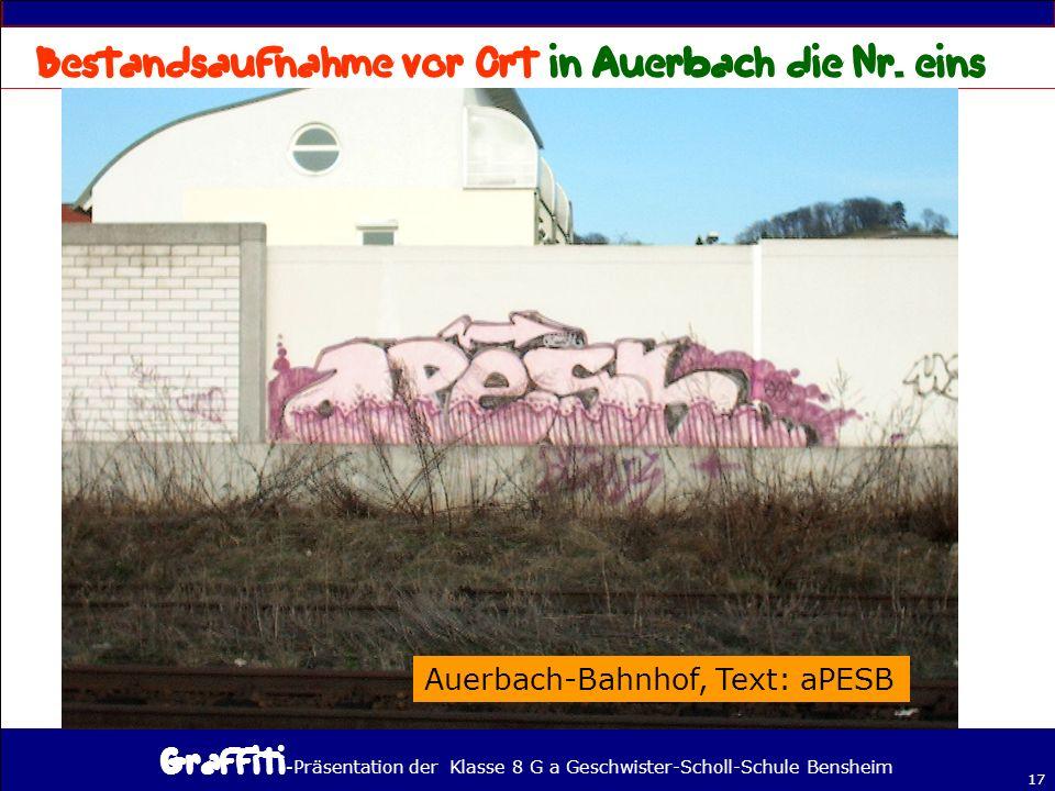 Bestandsaufnahme vor Ort in Auerbach die Nr. eins