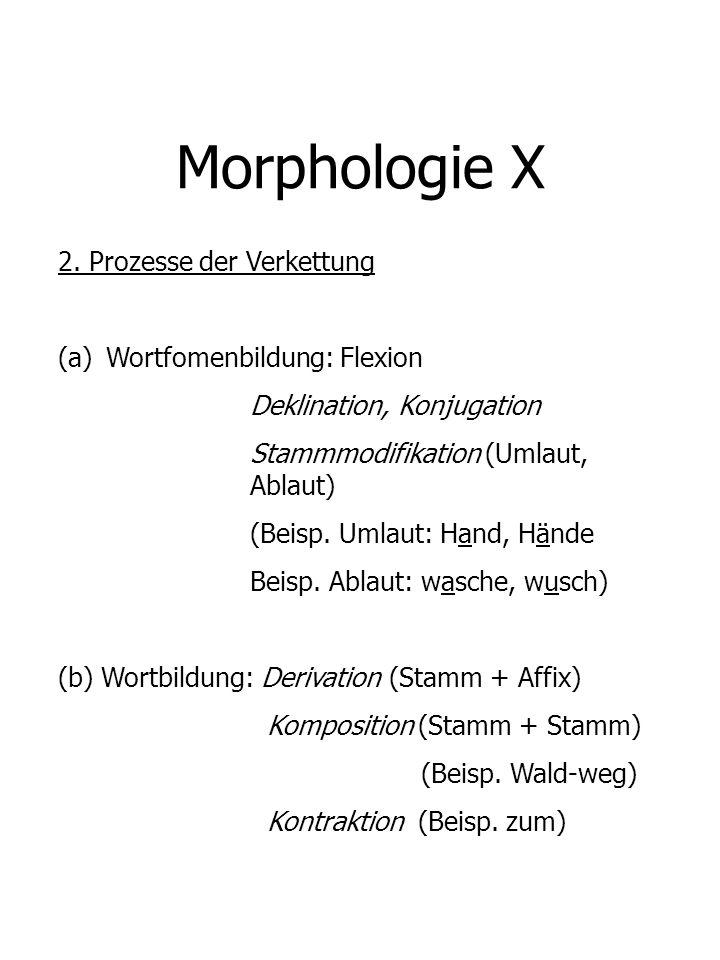 Morphologie X 2. Prozesse der Verkettung Wortfomenbildung: Flexion