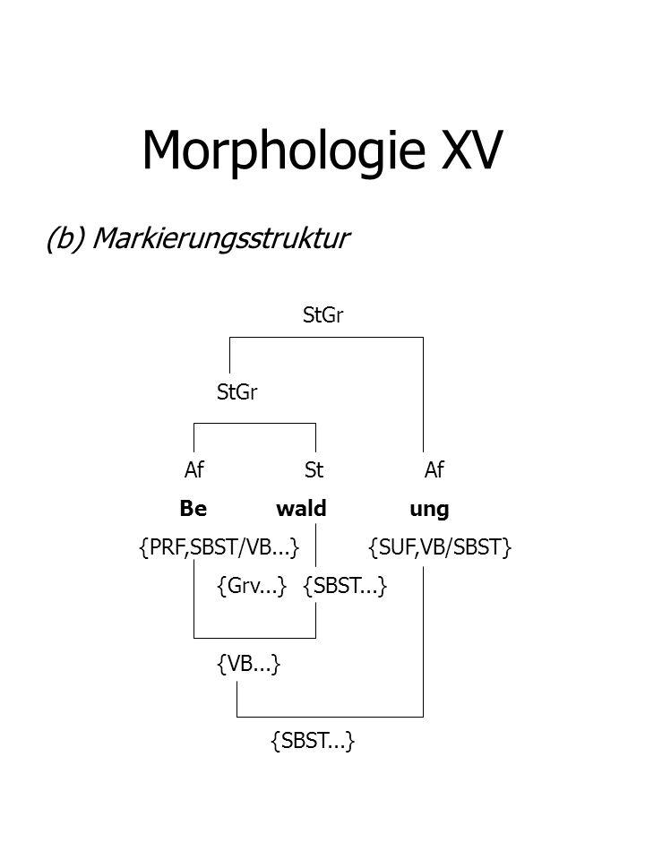 Morphologie XV (b) Markierungsstruktur StGr Af St Af Be wald ung
