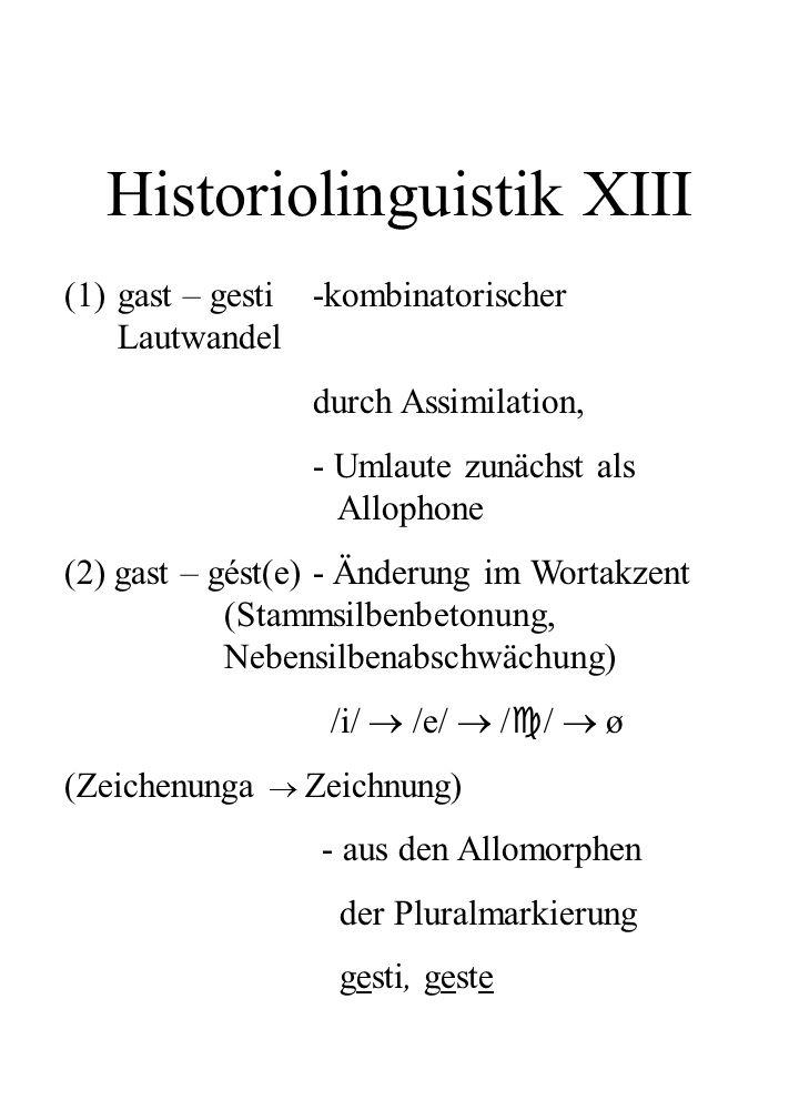 Historiolinguistik XIII