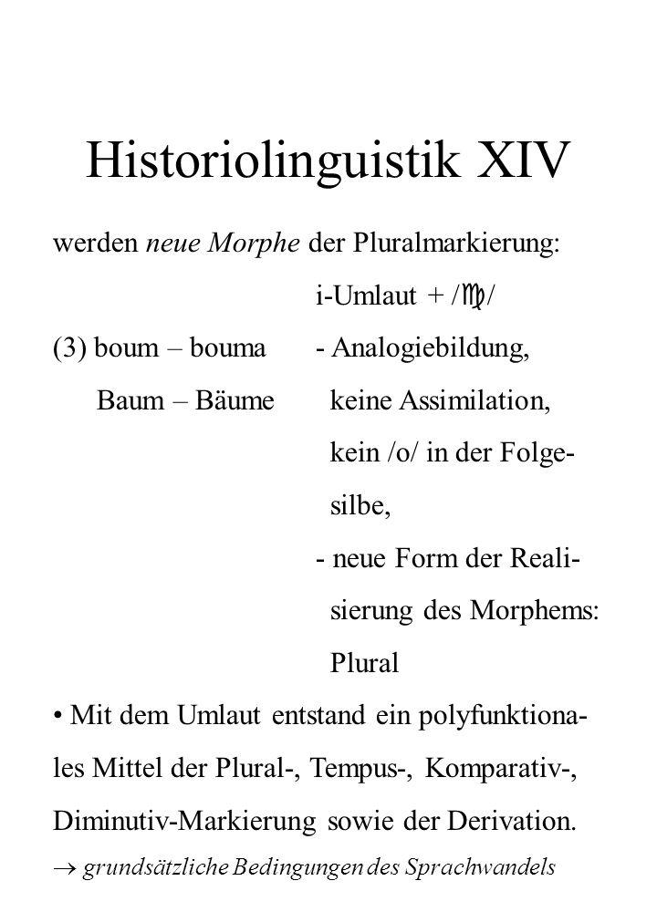Historiolinguistik XIV