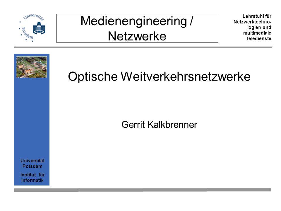 Optische Weitverkehrsnetzwerke