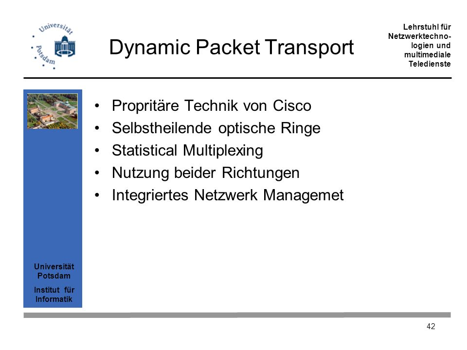 Dynamic Packet Transport