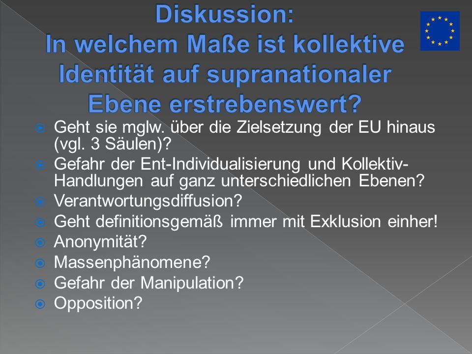 Diskussion: In welchem Maße ist kollektive Identität auf supranationaler Ebene erstrebenswert