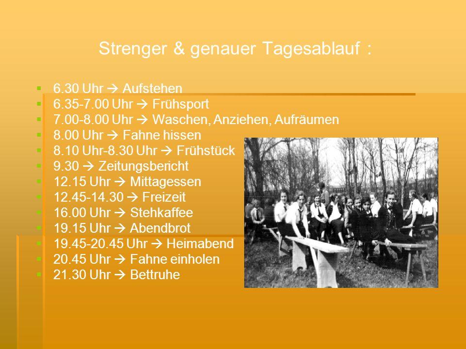 Strenger & genauer Tagesablauf :