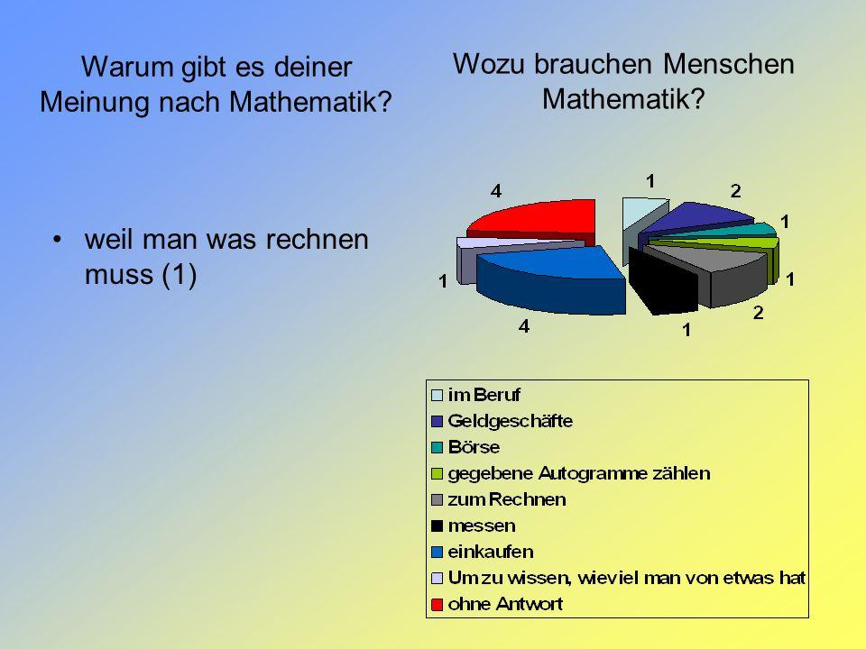 Warum gibt es deiner Meinung nach Mathematik