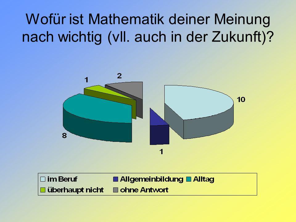 Wofür ist Mathematik deiner Meinung nach wichtig (vll