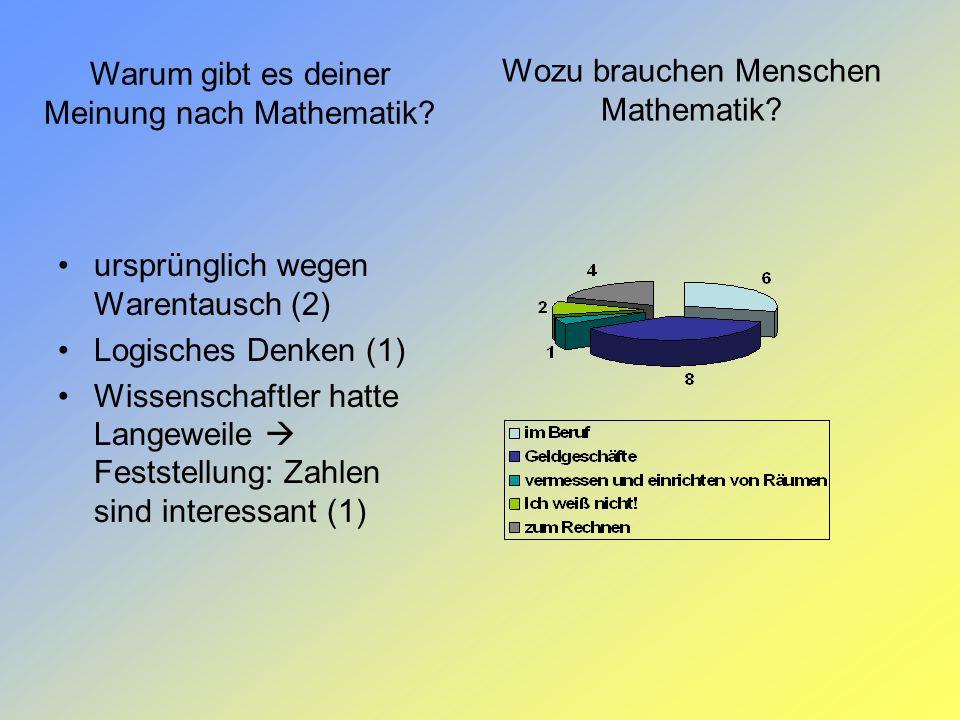 Wozu brauchen Menschen Mathematik