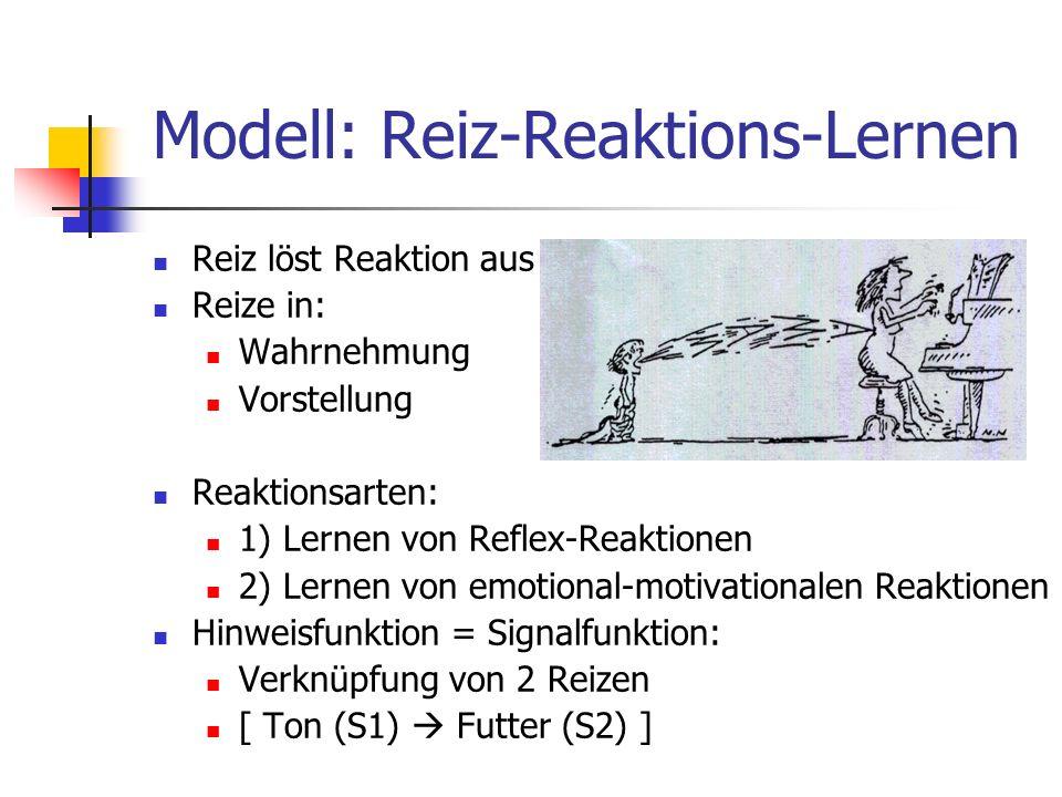 Modell: Reiz-Reaktions-Lernen