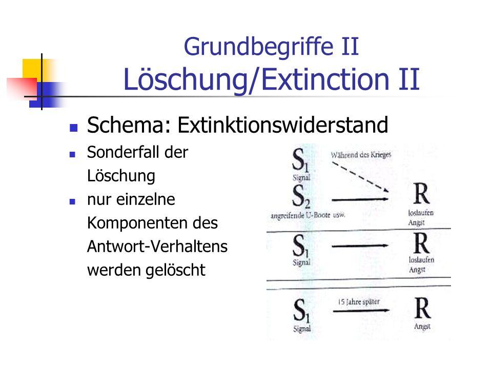 Grundbegriffe II Löschung/Extinction II