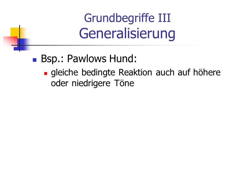 Grundbegriffe III Generalisierung