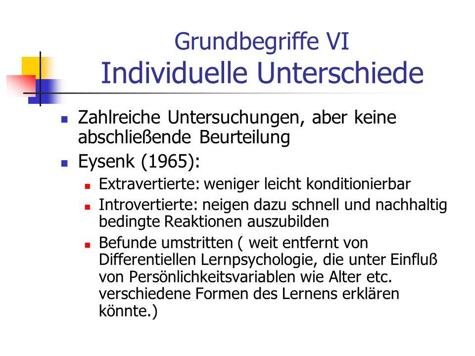 Grundbegriffe VI Individuelle Unterschiede