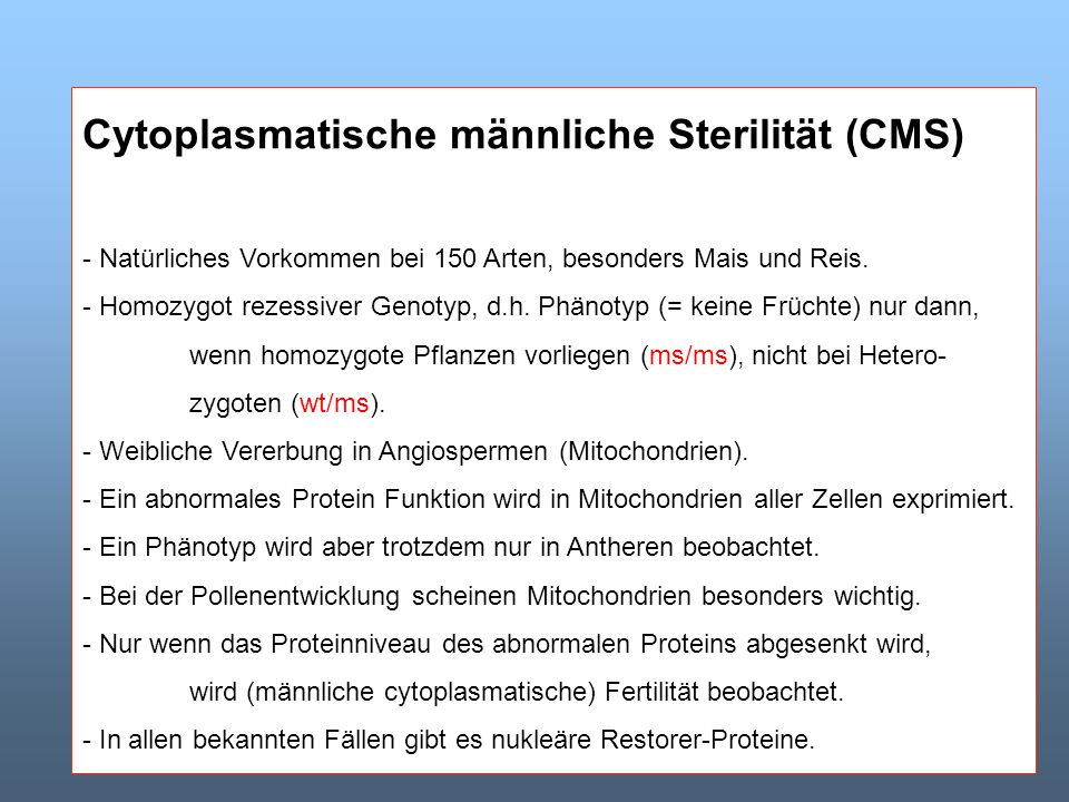 Cytoplasmatische männliche Sterilität (CMS)