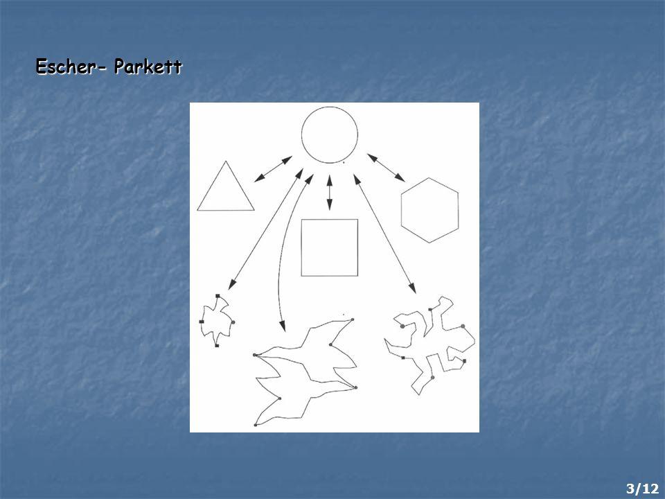 Escher- Parkett 3/12