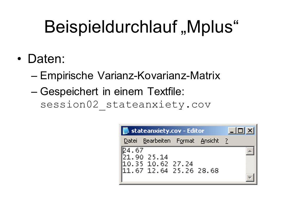 """Beispieldurchlauf """"Mplus"""