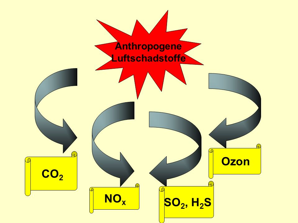Anthropogene Luftschadstoffe Ozon CO2 SO2, H2S NOx