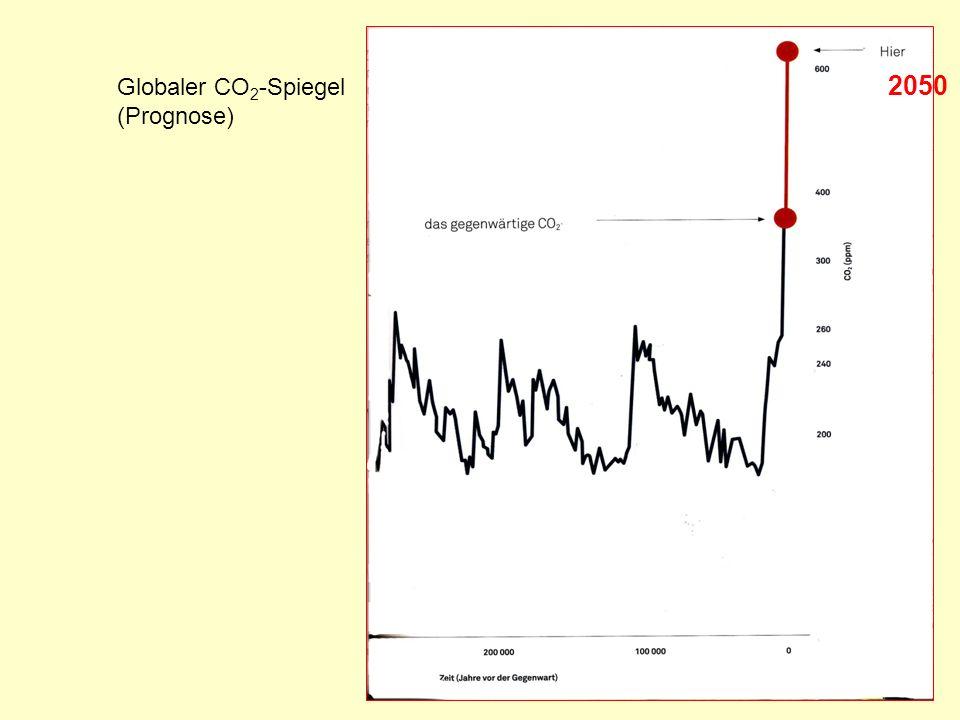 Globaler CO2-Spiegel (Prognose) 2050