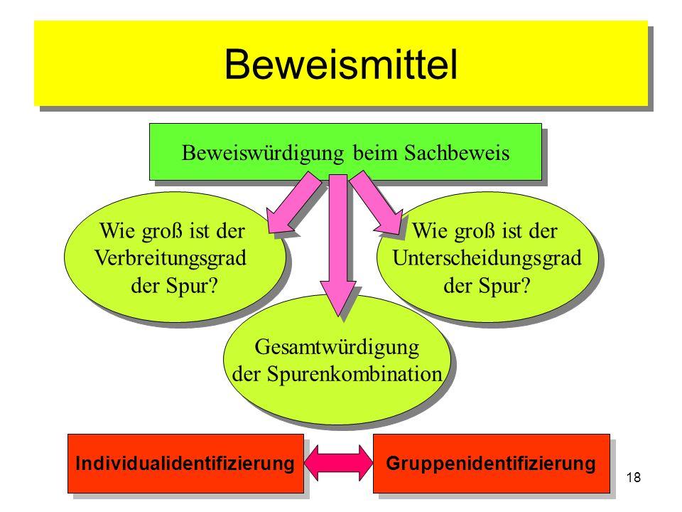 Individualidentifizierung Gruppenidentifizierung