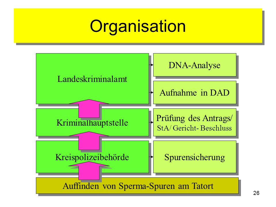 Organisation Landeskriminalamt DNA-Analyse Aufnahme in DAD