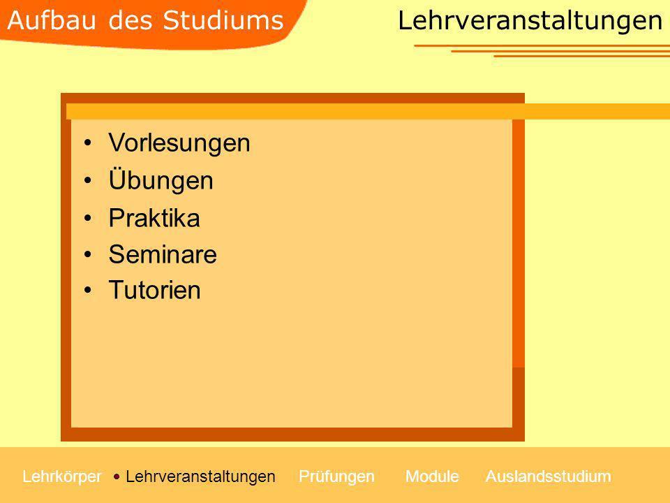 Aufbau des Studiums Lehrveranstaltungen Vorlesungen Übungen Praktika