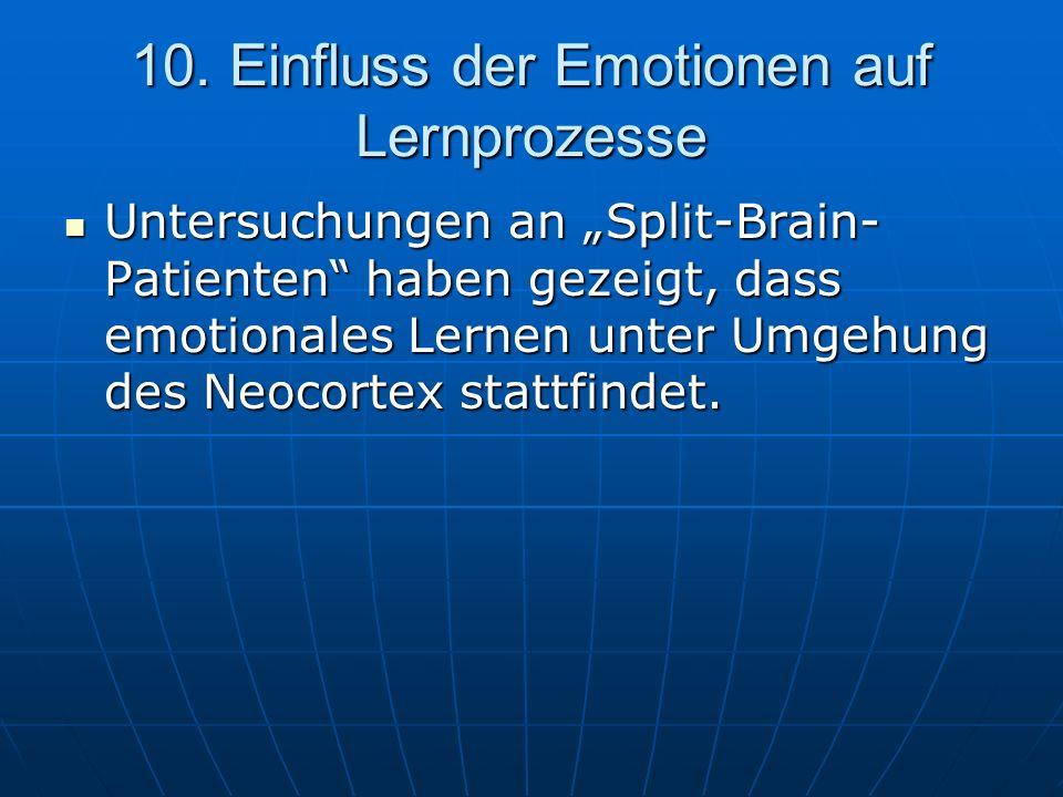 10. Einfluss der Emotionen auf Lernprozesse