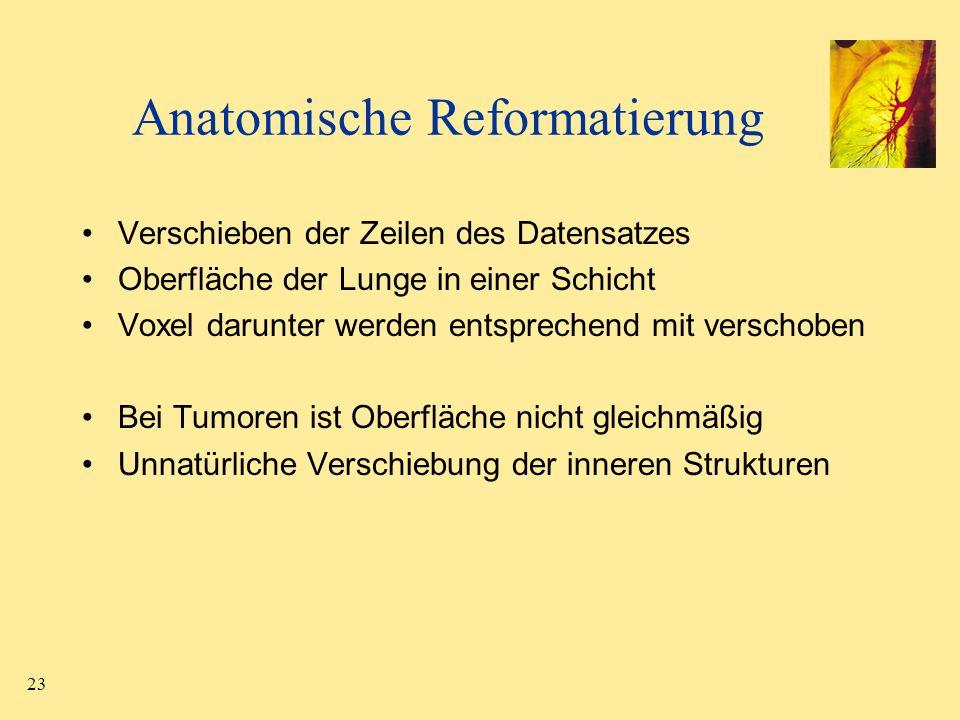 Anatomische Reformatierung