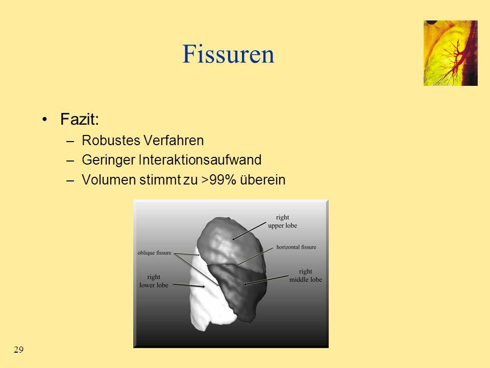 Fissuren Fazit: Robustes Verfahren Geringer Interaktionsaufwand