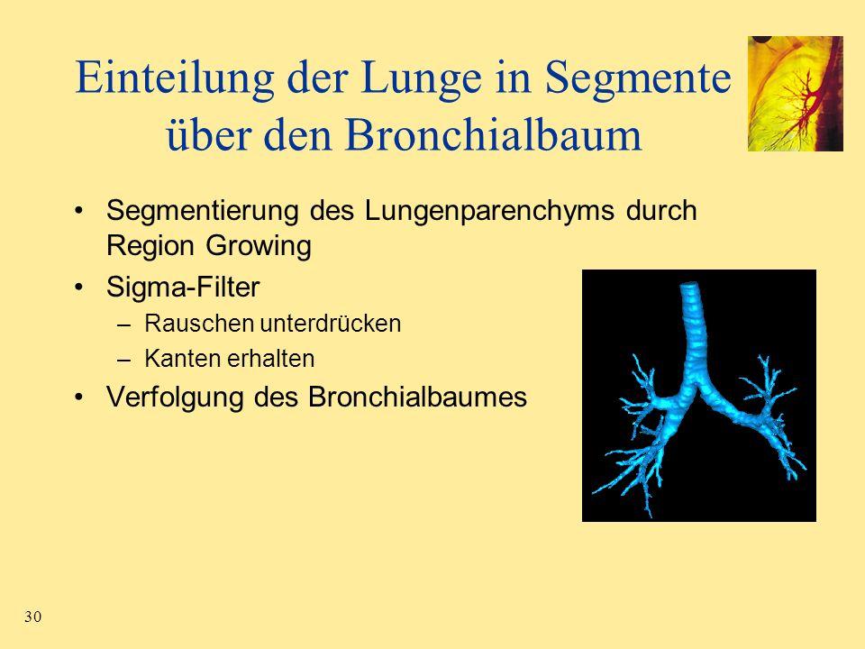 Einteilung der Lunge in Segmente über den Bronchialbaum