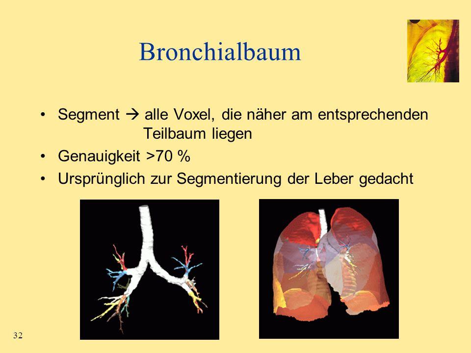 BronchialbaumSegment  alle Voxel, die näher am entsprechenden Teilbaum liegen. Genauigkeit >70 %
