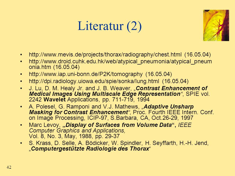 Literatur (2) http://www.mevis.de/projects/thorax/radiography/chest.html (16.05.04)