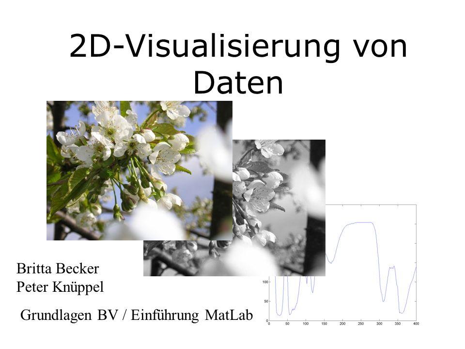 2D-Visualisierung von Daten