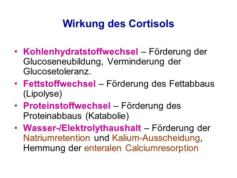 cortisol fettstoffwechsel