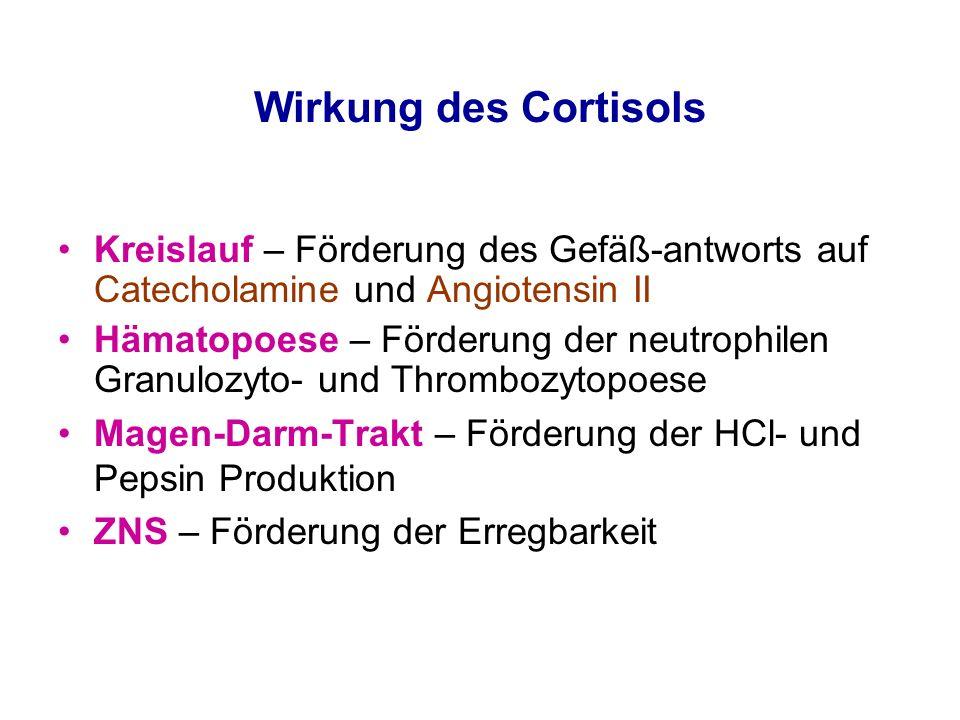 Wirkung des Cortisols Kreislauf – Förderung des Gefäß-antworts auf Catecholamine und Angiotensin II.