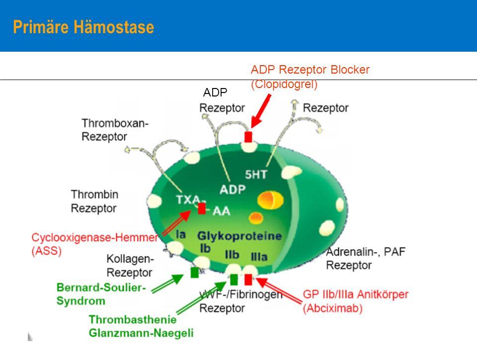 Primäre Hämostase ADP Rezeptor Blocker (Clopidogrel) ADP