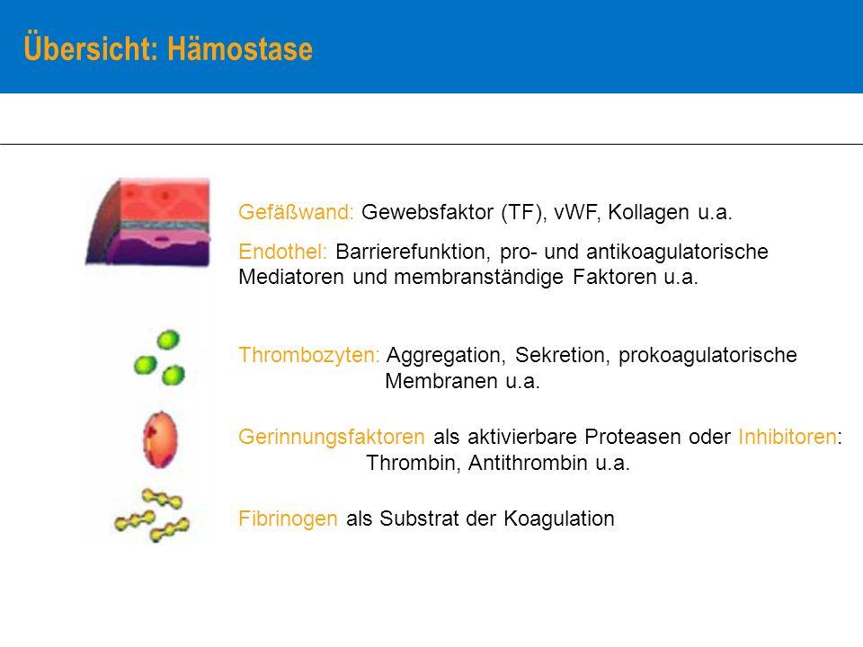 Übersicht: Hämostase Gefäßwand: Gewebsfaktor (TF), vWF, Kollagen u.a.