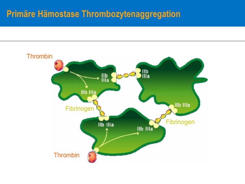 Primäre Hämostase Thrombozytenaggregation