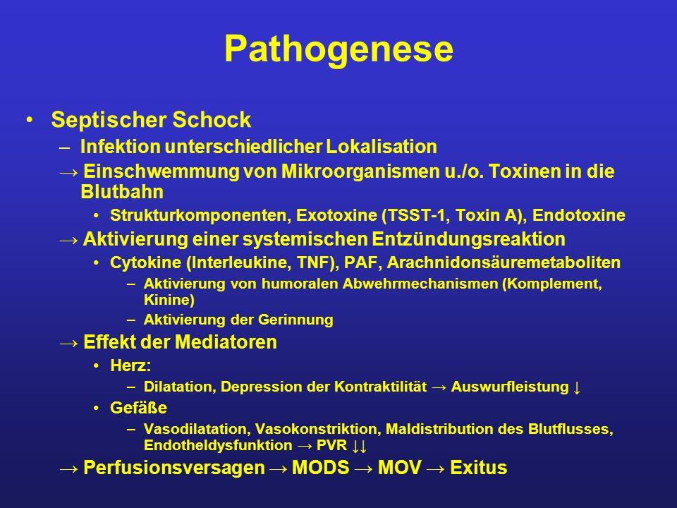 Pathogenese Septischer Schock Infektion unterschiedlicher Lokalisation