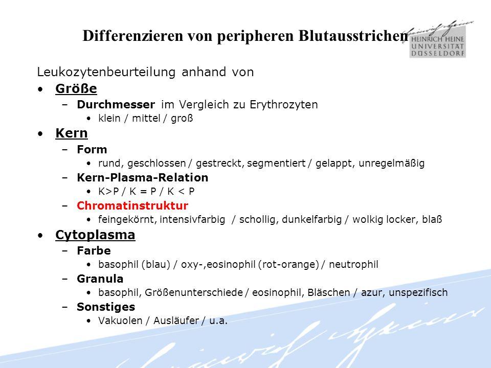 Differenzieren von peripheren Blutausstrichen