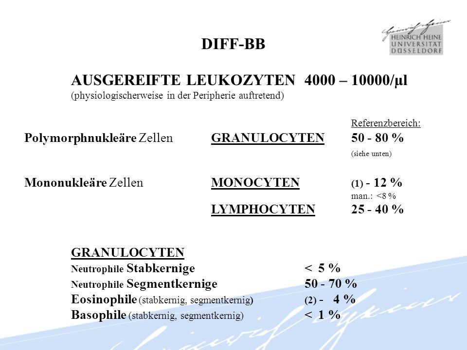 DIFF-BB AUSGEREIFTE LEUKOZYTEN 4000 – 10000/µl